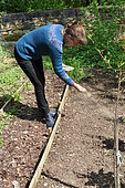 Sowing in the open ground, Permaculture sowing