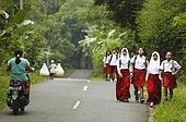 Schoolgirls, girls in school uniform on the street, Losari Village, Magelang, Java, Indonesia, Asia