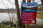Grossmatt Natural Sensitive Area, Ziegelmatt Marsh, renatured area protected by the Bas Rhin Departmental Council, Bas Rhin, Grand Est Region, France