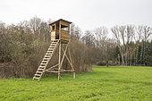 Natural sensitive area of Grossmatt, renatured area protected by the Departmental Council of Bas Rhin, Hunting mirador, Observation mirador, Bas Rhin, Grand Est region, France