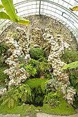 Calcite rockery, greenhouse, Park of Ravalet Castle, Cherbourg-en-Cotentin, Normandy, France