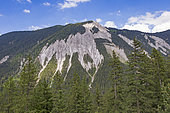 Alpine glade with erosion of the limestone soil that can eventually create scree on the steep slopes of the mountains, Champagny-en-Vanoise, Savoie, Auvergne-Rhône-Alpes Region, France