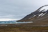 Île Edgeoya, îles Svalbard.
