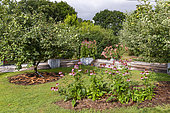 Rocambole gardens, Artistic vegetable and botanical gardens in organic farming, A meeting between art and Nature, flower beds, in flowerbed, La Lande aux Pitois, Corps Nuds, Ille-et-Vilaine (35), Brittany, France