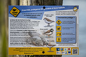 Sign to raise awareness of the presence of aCommon Ringed Plover nest in spring, placed by the Groupement Ornithologique et Naturaliste du Nord pas de Calais, Sangatte, France.