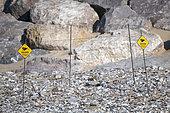 Protective enclosure of a nest of Common ringed plover in spring, installed by the Groupement Ornithologique et Naturaliste du Nord pas de Calais, Sangatte, France