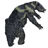 Eremotherium ground sloth. Eremotherium was a herbivorous Giant Ground Sloth that lived in North and South America during the Pleistocene Period.