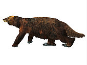 Megatherium ground sloth walking, white background. Megatherium was a herbivorous Giant Ground Sloth that lived in Central and South America during the Pliocene and Pleistocene Periods.