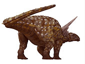 Sauropelta armored dinosaur. Sauropelta was a herbivorous armored dinosaur that lived in North America during the Cretaceous Period.
