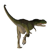 Rugops dinosaur, rear view on white background. Rugops was a predatory feathered theropod dinosaur that lived in Africa during the Cretaceous Period.