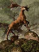 An Irish Elk stands proudly in a dense forest.