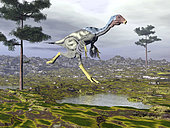 Caudipteryx dinosaur.