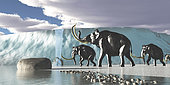 A herd of Woolly Mammoths encounter a huge glacier covering the Arctic territory.