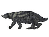 Eremotherium ground sloth, side view. Eremotherium was one of the largest ground sloths that lived in North and South America in the Pleistocene Period.