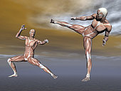 Male musculature in fighting stance.