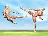 Two male musculatures fighting martial arts.