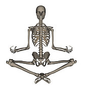 Front view of human skeleton meditating, isolated on white background.