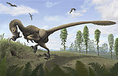 Saurornitholestes, a Cretaceous dromaeosaur of North America, may have sought prey in burrows.