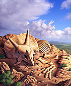 The exposed bones of a Triceratops on a western landscape with it's apparition appearing in the clouds.