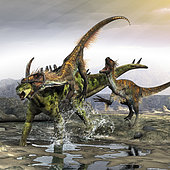 A Utahraptor manages to slip through a Gigantspinosaurus's armor with a throat kill.