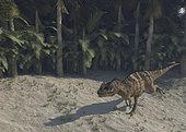 Ceratosaurus running across prehistoric landscape.
