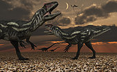 Two young male Allosaurus dinosaurs have their eyes focused on passing giant sauropods. Together they may have the chance of taking down either a young, old, or even sick sauropod.