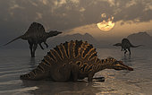 A group of Spinosaurus from Earth's Cretaceous period of time.