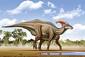 A Parasaurolophus searches for a source of water.