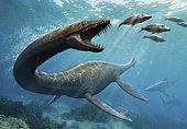 Thalassomedon, a genus of plesiosaur, fishing under the North America sea.