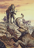 Columbian Mammoth (Mammuthus columbi) trapped in a sinkhole, Pleistocene Epoch (Ice Age) of North America.