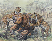 Smilodon dirk-toothed cats attacking a Glossotherium during the Pleistocene Epoch (Ice Age) of North America.