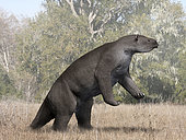 Megatherium americanum from the Pleistocene epoch of South America.