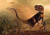 A Torvosaurus on the prowl while a group of Ornitholestes flee a hasty retreat. Torvosaurus was a large megalosaurid theropod dinosaur that lived during the later part of the Jurassic Period in what is now Colorado and Portugal.