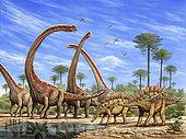 Mamenchisaurus herd and a pair of Huayangosaurus roaming by a stream.