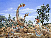 Therizinosaurus defends its nest from a group of Oviraptors.