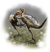 Two fighting males of Tianyulong confuciusi. Yixian province, China. Aptian, Early Cretaceous.