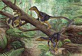 A group of Balaur bondoc in a prehistoric environment.