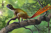 Epidexipteryx dinosaur perched on a branch ready to eat a nearby spider.