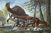 Labocania attacking a Magnapaulia. The tyrannosaurid stumbled and fell, allowing the lambeosaurine to escape.