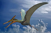 Ludodactylus sibbicki, a pterosaur from the Lower Cretaceous Crato Formation of Brazil.