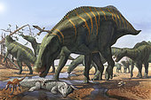 A herd of Shantungosaurus dinosaurs from the Late Cretaceous Period. In dry, hard times, these herbivorous giants picked up everything in its path.