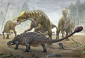 A female Saurolophus attempts to crush a Tarchia armored dinosaur as it seeks to destroy their nest.