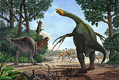 A Therizinosaurus emerges from the undergrowth to prevent a young Tarbosaurus in his hunt for Gallimimus.