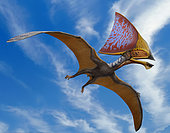 Tupandactylus imperator, a pterosaur from the Early Cretaceous Crato Formation of Brazil.