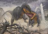 A territorial dispute between a pair of Tyrannotitan chubutensis male dinosaurs