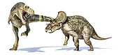 Tyrannosaurus rex attacking a Triceratops. Isolated on white background with dropped shadow.
