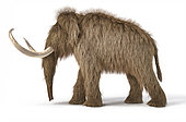 3D illustration of a woolly mammoth. Side view on white background with drop shadow.