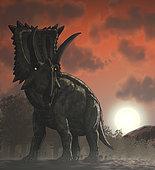 Coahuilaceratops walking through a Cretaceous sunset.