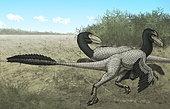 Two Dromaeosaurus dinosaurs sunbathing in the Late Cretaceous Period.