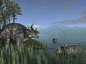 Resembling modern day hippopotami, three Estemmenosuchus mirabilis face off in a Paleozoic lake 255 million years ago in what is today the Perm region of Russia near the Ural Mountains. About the size of a modern adult bull, Estemmenosuchus mirabilis was a plant-eating early ancestor of today's mammals.